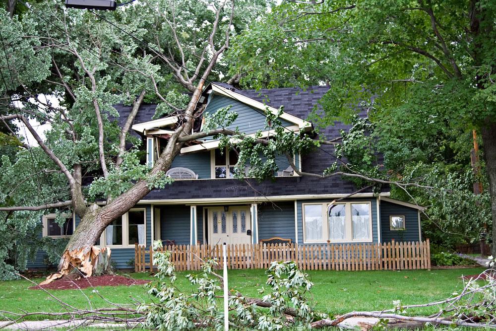 Wind Storm & Hurricane Damage